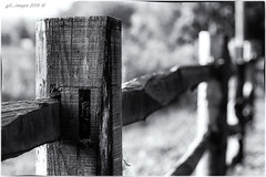 FENCE POST... (kirby126) Tags: fence post resized image canon60d 50mm kent house