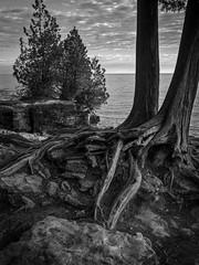 Cave Point State Park B&W (Frank Cardoze) Tags: wisconsin cavepoint doorcounty olympus omd em5 markii fall sunrise monochrome bw zuiko 1240 statepark