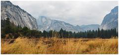 Yosemite Valley and Half Dome Pano (EastStorm) Tags: yosemitenationalpark panorama sierra yosemitevalley halfdome northface grass