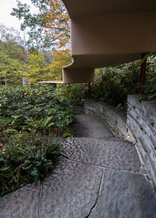 Stairs to Where? (trainmann1) Tags: nikon d90 tokina 1116mm amateur handheld millrun pa pennsylvania autumn fall october 2016 1936 1939 architecture architect design franklloydwright flw famous beautiful wonderful amazing vintage woods forrest trees leaves foliage fallingwater fallingwaterhouse house home vacation getaway bearrun tributary yellow green red orange concrete stone stairs descend