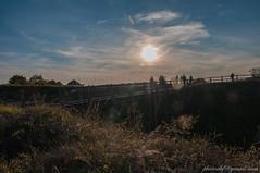pont saumur  contre jour (brunoduboeuf) Tags: chateau contrejour d90 landscape nikon pont saumur sigma sigma1770 soleil sunset
