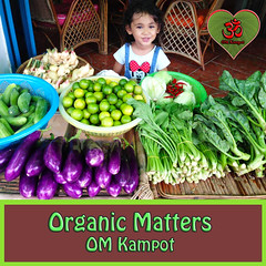 OM-Organic-Market-Restaurant+Organic-Shop-Kampot-Cambodia- (Akoo Chillout Ibiza) Tags: om organic permaculture restaurant farm foodforest akoo kampot cambodia vegetables greenheart holistic project