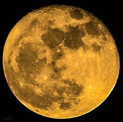 Super Luna (PictureJem) Tags: nocturna cielo luna