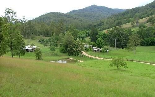 4531 Taylors Arm Road, Thumb Creek NSW 2447