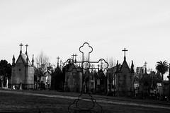 Em paz / in peace - EXPLORE Nov 7, 2016 (Francisco (PortoPortugal)) Tags: 2252016 20140123fpbo0762 pb bw monocrome cemitrio cemetery agramonte porto portugal portografiaassociaofotogrficadoporto franciscooliveira