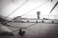 _LTI6112 (timpelan-photography) Tags: hochzeit hochzeitsfotografie hochzeitsreportage braut brautkleid brutigam stralsund horch fock regen regenschirm schirm leipzig timpelan