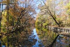 D&R Canal (gumulak) Tags: canal trenton newjersey mercercounty