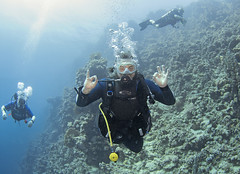 03.11 12 (KnyazevDA) Tags: diver disability undersea padi paraplegia amputee underwater disabled handicapped owd aowd scuba