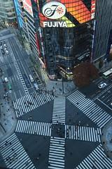 Crossing(Ginza Tokyo) (seiji2012) Tags: 銀座 数寄屋橋 銀座東急プラザ 交差点 ネオン crossing ginza sukiyabashi traffic