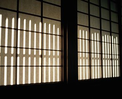 The Japanese Sun light (YUKIHAL) Tags: pentax67 smc p67 90mm f28 rdpiii fujifilm film provia100f 120 bokeh mediumformat analog 67 6x7 pentax
