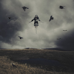 With the Blackbirds (Erin Graboski) Tags: eringraboski eringraboskiphotography fineartphotography fineart fineartconceptualphotography fineartportraiture blackbirds birds field floating levitation darkart squareformat squareformatphotography conceptual conceptualphotography conceptualart conceptualportraitphotography conceptualportrait art artist surreal surrealphotography fantasy fantasyphotography fairytale dream dreaming dreamstate dreams dreamy