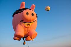 When pigs fly (sniggie) Tags: hotairballoon hamdays hamdayscelebration pigasus dawn kentucky marioncounty flight balloonrace pig