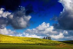 Palouse County (klauslang99) Tags: klauslang nature naturalworld northamerica palouse county washington usa clouds fields composition