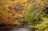 River Teign at Steps Bridge, Devon 2 (chris-parker) Tags: river teign devon steps bridge dunsford stepping stones village autumn