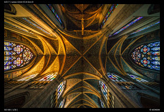 St. Paul's Cathedral, Lige (Falcdragon) Tags: lenstagger laowa12mmf28 laowa sonya7alpha cathedral ceiling art stainedglass windows arches architecture lige belgium church indoors