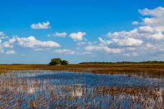 Everglades (saparmo) Tags: seleccionar everglades lago nubes pantano cielo azul vida salvaje florida miami usa