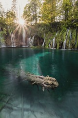 Plitvice (LennartAiscan) Tags: plitvice nature nationalpark naturepic water waterfall blue travel trip tree turqoise trees trunk sunset sun sunstar landscape landscapephotography landscapes longexposure lake wideangle croatia explore adventure summer surreal