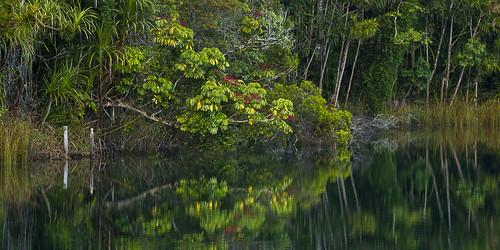 Lake Eacham - Queensland_MG_4256 by fveronesi1, on Flickr