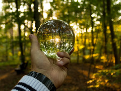 Murmelspiele.... (ma_boehm) Tags: outdoor wald spiegelung sonnenschein glaskugel canoneos700d