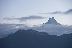 Nepal, Poon Hill: Machhapuchhre/Fish Tail at Sunrise (dscheronimo) Tags: nepal mountain berg sunrise trekking trek nikon hiking wolken himalaya sonnenaufgang wandern d800 fishtail poonhill machhapuchhre heiligerberg bergspitze