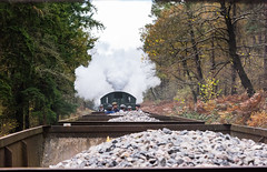 View from the Brakevan (Articdriver) Tags: woodland transport railway trains goods steam locomotive wagons ballast forestofdean gwr greatwestern 5541 deanforestrailway