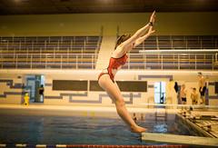 Regular training in Brussels, Belgium (monsieur I) Tags: brussels people sport canon belgium action diving swimmingpool intheair acrobatic canoneos5dmark3 monsieuri royalbrusselsposeidon sigma35mmf14arthsm