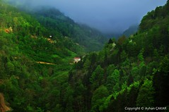 Green Valley Sürmene (NATIONAL SUGRAPHIC) Tags: shack mothernature trabzon valleys naturephotography doğa sürmene vadiler sugraphic ayhançakar annedoğa