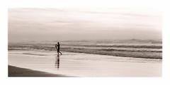 surfeur (Bruchado) Tags: mer sport surf vagues noirblanc