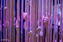 Knots (leoleamunoz) Tags: museo museum santiago galeria art arte