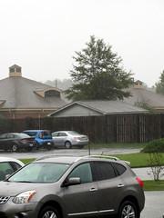 Rain Continues. (dccradio) Tags: lumberton nc northcarolina robesoncounty hurricanematthew matthew hurricane storm weather stormy rain raining rainy disaster flooding water bodyofwater tree trees greenery