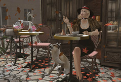 Tea Time (prettynontan) Tags: paris cafe autumn catwa belleza venus twi red fox deetalez secondlife sl