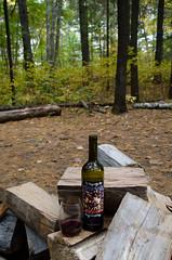 Tragically Hip wine (L*Ali) Tags: bonechoprovincialpark nikond7000 sigma1770mmf28macro fall autumn nature leaves colours rocks green red tragicallyhip wine