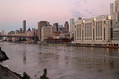 Morning Light 3 (Roosevelt Island/NYC) (chedpics) Tags: newyork rooseveltisland eastriver