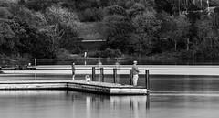 An Evening of Fishing (Matt Buelt) Tags: fishing lake dock longexposure blackandwhite water shawneemissionpark kansas