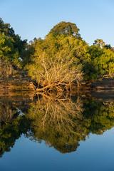 South Africa 2016 (mcmessner) Tags: adventure africa bj boat portrait reflection river tongabezi tongabezilodge water zambeziriver zambia livingstone
