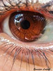 Soul's Mirror (PinoShot) Tags: mirror soul eye brown macro occhio marrone anima specchio ciglia eyelashes pupilla iride iris pupil cerchio