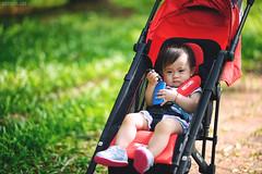 (M.K. Design) Tags:                       taiwan nantou puli ncnu university school family infant baby madebysweden swedish volvocartaiwan v40 v40cc v40crosscountry hatchback wagon  nikon d800e afs 105mmf14e ed bokeh hdr