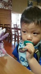 2016.10.11 @Mt. Nathan Winery  (amydon531) Tags: baby boys kids brothers justin jarvis family toddler cute   gold coast australia trip travel vacation mt nathan winery