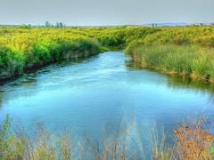 The Owens River (joe Lach) Tags: owensriver owenslake river bishop stream sierranevada inyonationalforest waterwars water waterpictorial california californiaaqueduct vegetation green joelach