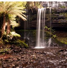 Russell Falls (stevecart84) Tags: water waterfalls tasmania rocks mt field outdoors nikon d80 scenic tranquill ferns