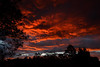 Bloodred Sunset (Kevin_Jeffries) Tags: silhouette kevinjeffries nikond7100 nikkor 1685mm bloodred nature newzealand