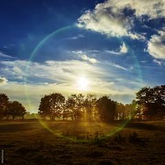 """perfect morning"" (B.Graulus) Tags: photography landscape sunrise nature wingene westvlaanderen belgium belgië belgique belgica clouds sun fields canon outdoor cloud sky landschap wolken lucht color blue blauw"