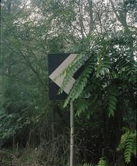 itsasign (Anders Hviid) Tags: itsasigh it is sign plaubel makina film negative analog 120 medium format kodak portra 160 italy orte
