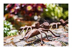 Ant Uprising (red stilletto) Tags: oakdenewinery oceangrove wallington garden gardens macro bokeh bellarinepeninsula famousflickrfive ant rust rusty rusted sculpture