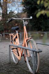 bike with aura (Amselchen) Tags: bike bicycle vehicle bokeh blur dof depthoffield fuji fujifilm fujifilmxseries xt2 fujixt2 zeiss carlzeiss planar zs m42 planar1450 planar1450tzs planar5014zs