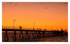 Glenelg Jetty (Explored) (Sougata2013) Tags: adelaide southaustralia australia glenelgjetty glenelg jetty sea seabeach sunset evening nature landscape nikond3200 silhouette