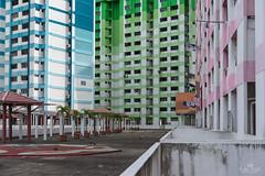 Community (kiatography1) Tags: rochorcentre rochor centre singapore urban town community hdb housingdevelopmentboard bugis facades landscape cityscapes land city scapes buildings housing people streets colorful colourful color colours house housings