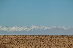 IMG_6377 (Israel Filipe) Tags: marrocos
