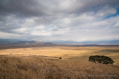 Ngorongoro Crater (Photos in overcast weather don't do the place any justice)