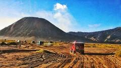 Mount Bromo - Malang, Indonesia. May 2016 (widisoetardjo61) Tags: savana jeep hardtop bromo pasir malang tengger